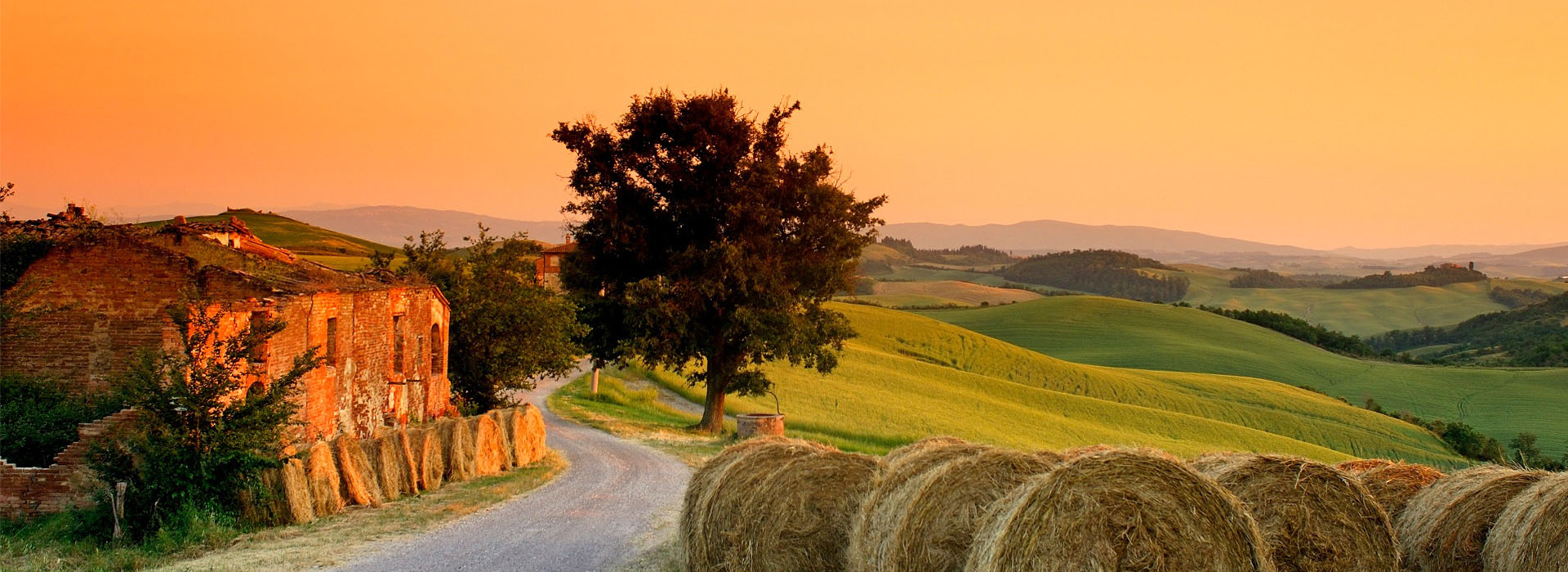 Tuscany Hay Barrels & Meadow